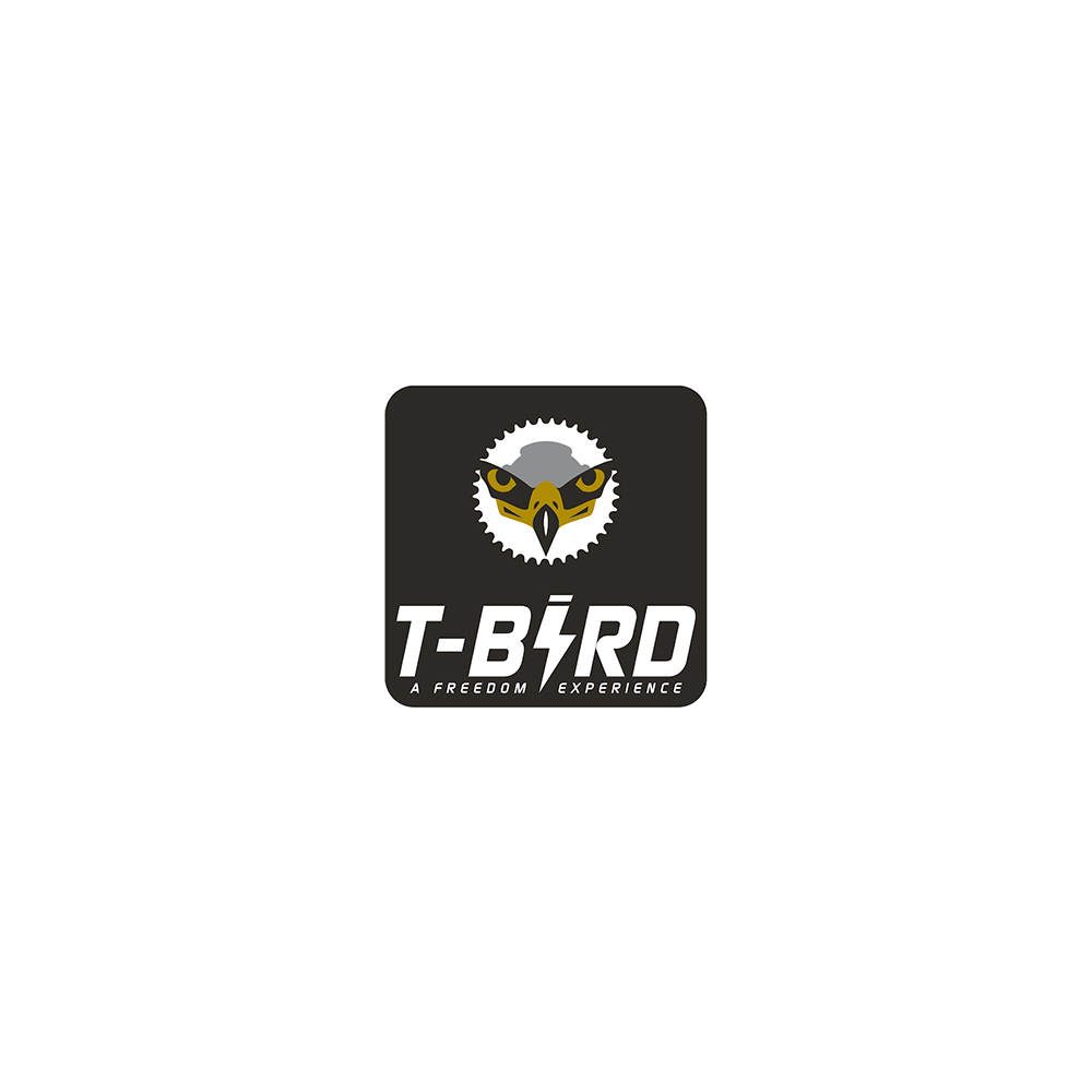 Agence de communication Orléans Tours T-Bird